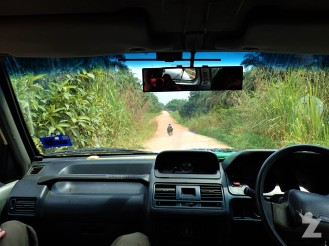Driving down the dirt roads through the oil palm plantations on our way to the jungle