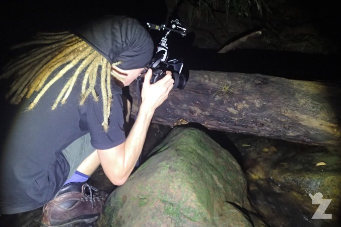 Tom photographing a huge fishing spider