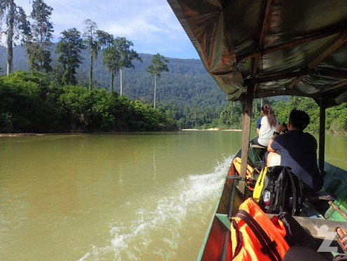 Travelling down the Endau River by boat