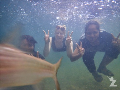 The photo-bombing fish strikes again!