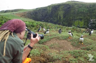 Tom capturing some beautiful puffin shots