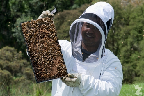 Emmanuel the Bee Keeper (1)