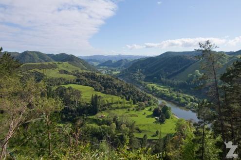 Whanganui River Road