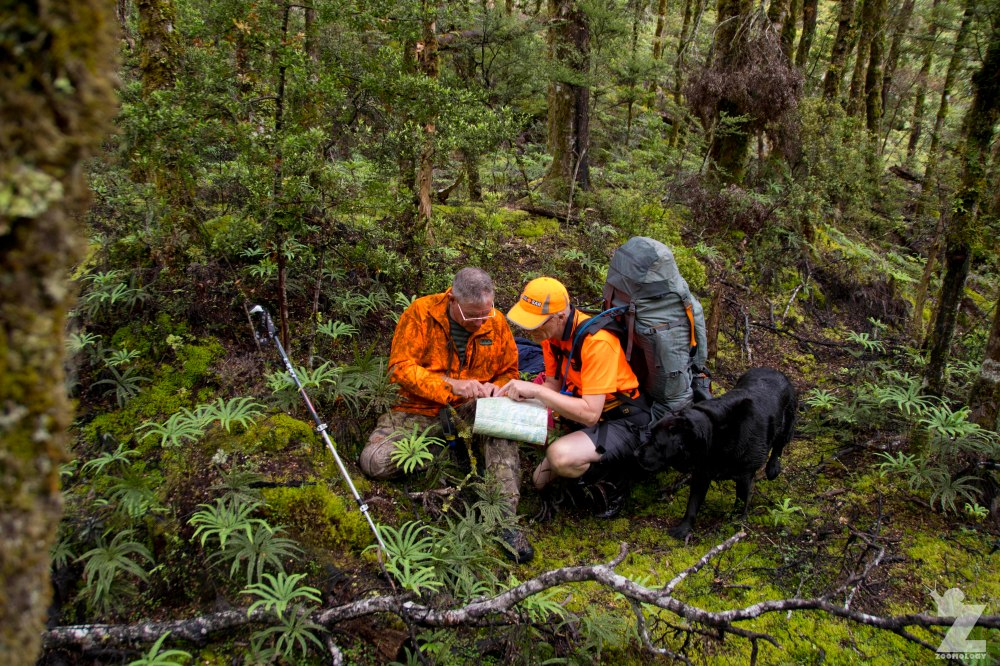 Consulting the Map, Kaweka Forest Park, New Zealand 20-01-2018