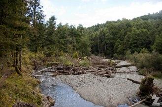 Rivers, Kaweka and Kaimanawa Forest Park, New Zealand 20-01-2018