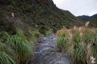 Stream, Kaweka and Kaimanawa Forest Park, New Zealand 20-01-2018