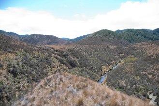 Tussock Valleys (2), Kaweka and Kaimanawa Forest Park, New Zealand 20-01-2018