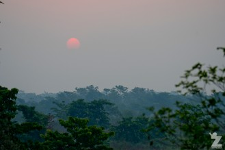 2018-04 Chitwan National Park, Nepal - Zoomology (295)