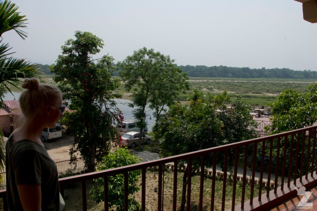 Jungle Wildlife Camp - The view from our room down towards the river