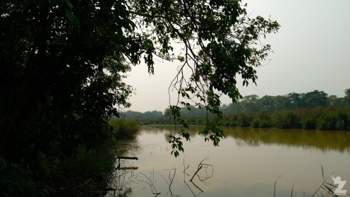 2018-04 Chitwan National Park - Zoomology (17)