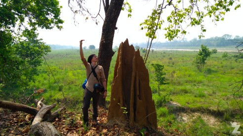 "Tom (6'3"") standing beside a termite mound!"